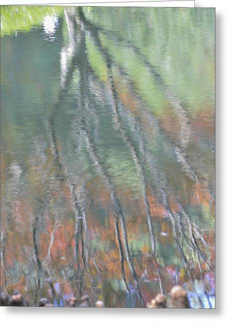 Reflections Greeting Card by Linda Geiger