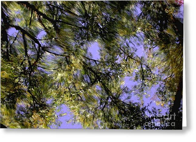 Reflections Greeting Card by Marc Bittan