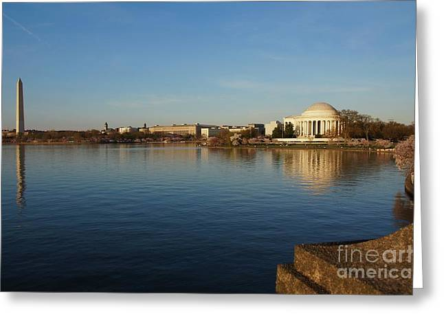 Reflections  Greeting Card by Megan Cohen
