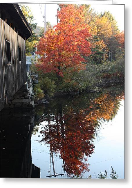 Reflections New Hampshire Greeting Card by Sue Mayor