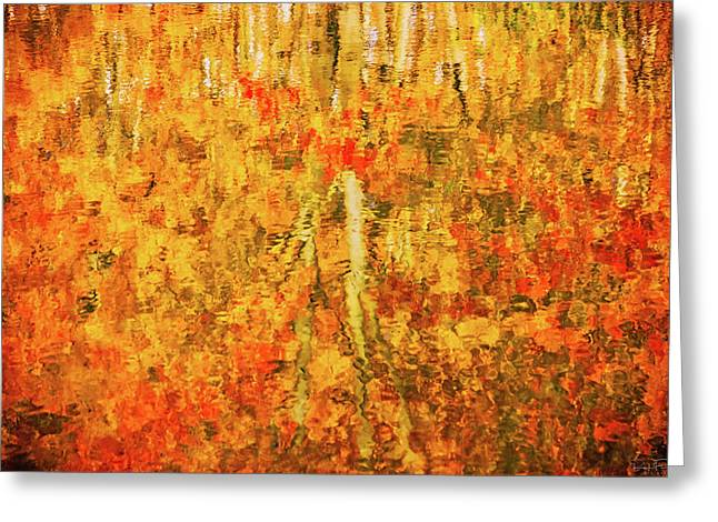 Reflections Of Fall Greeting Card