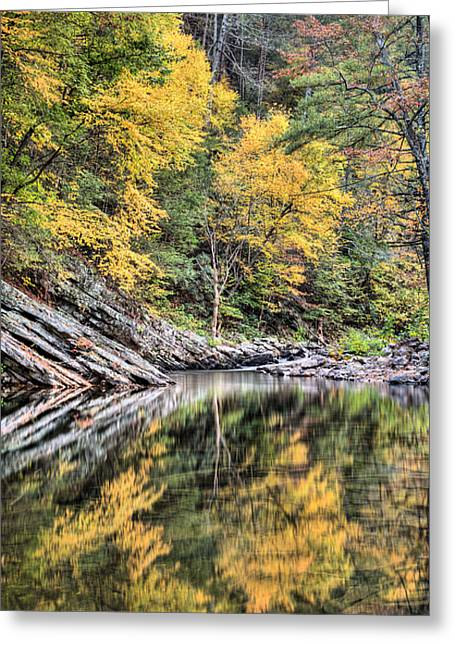 Reflections Of Natural Color Greeting Card by JC Findley