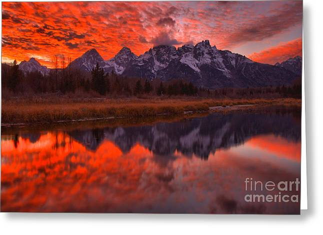 Reflections Of Orange In The Snake River Greeting Card