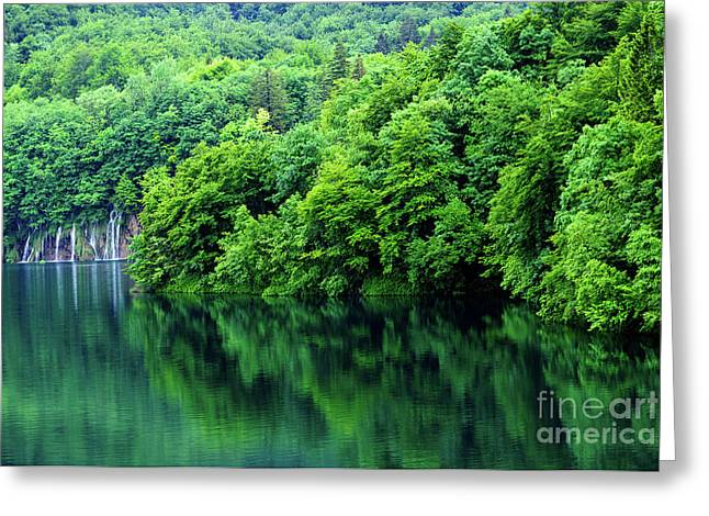 Reflections Of Plitvice, Plitvice Lakes National Park, Croatia Greeting Card