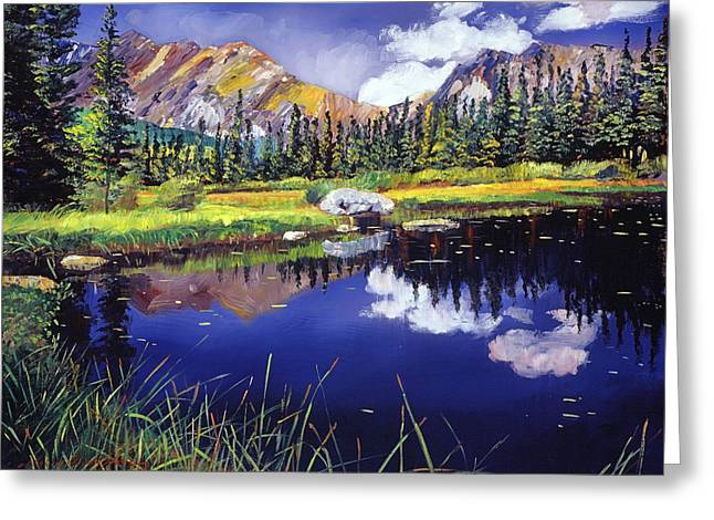 Reflections Of Solitude Greeting Card by David Lloyd Glover