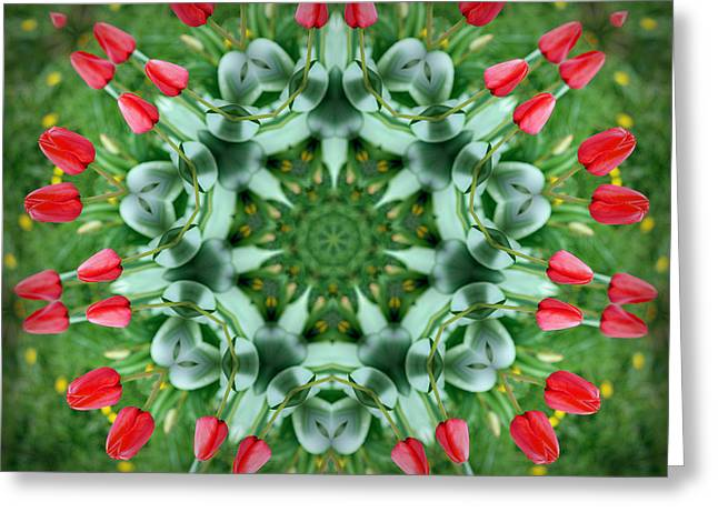 Tulip Bud Greeting Cards - Reflections of Spring Greeting Card by Cricket Hackmann