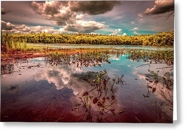 Reflections Of Summer Past Greeting Card