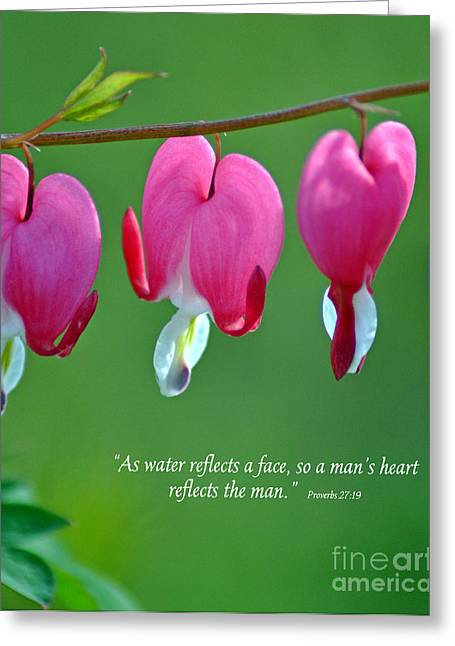 Reflections Of The Heart Greeting Card by Diane E Berry