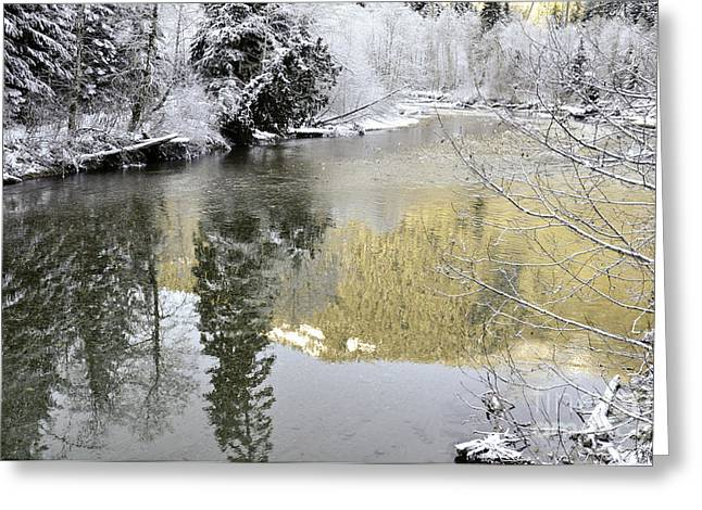 Reflections Of Winter Greeting Card by Clayton Bruster