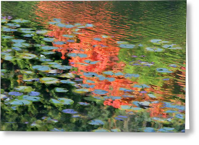Reflections On A Lily Pond Greeting Card