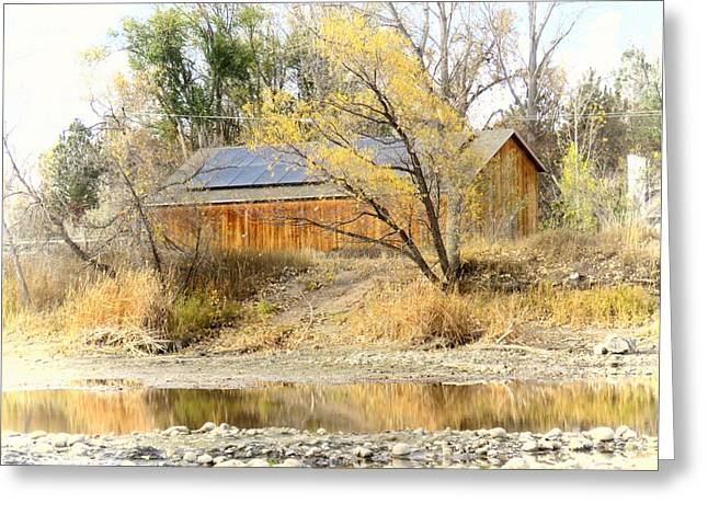 Reflections On A Pond Greeting Card by Diane M Dittus