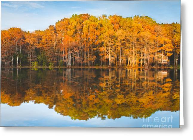 Reflections On Caddo Greeting Card by Sonja Quintero