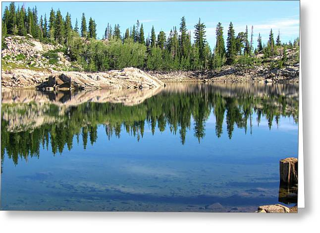 Reflections On Lake Mary Greeting Card