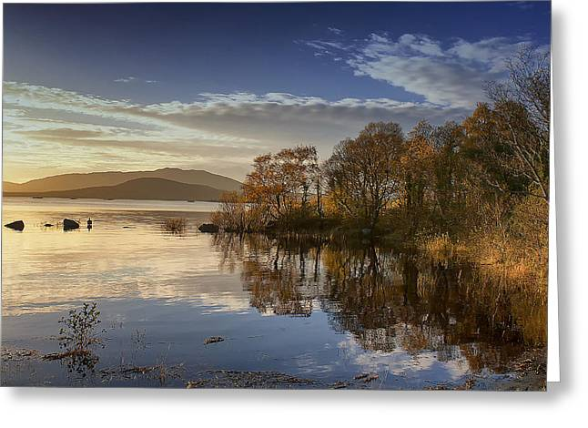 Reflections On Lough Cullin Greeting Card by Frank Fullard