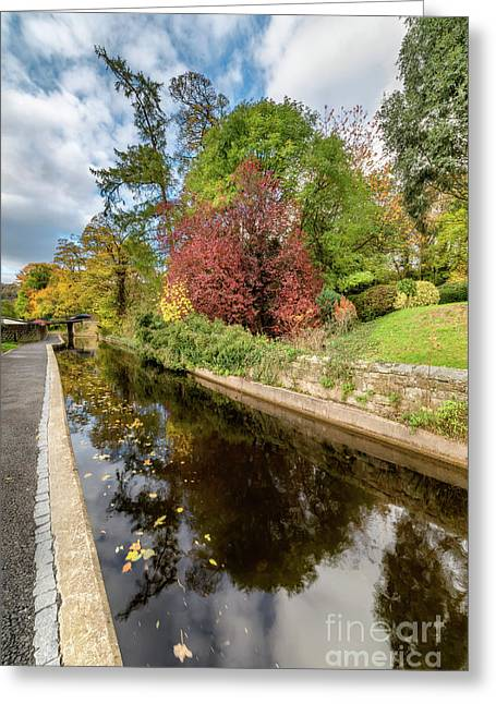 Reflections On The Canal  Greeting Card by Adrian Evans