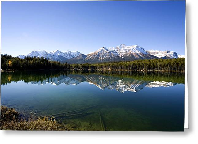 Reflections Greeting Card by Richard Steinberger