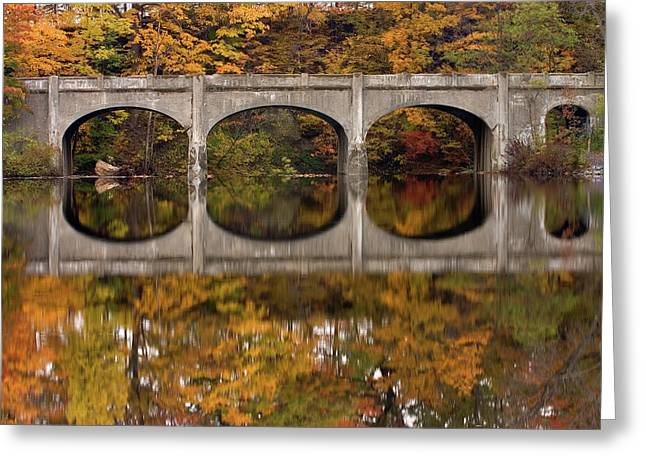 Reflections Greeting Card by Timothy McIntyre