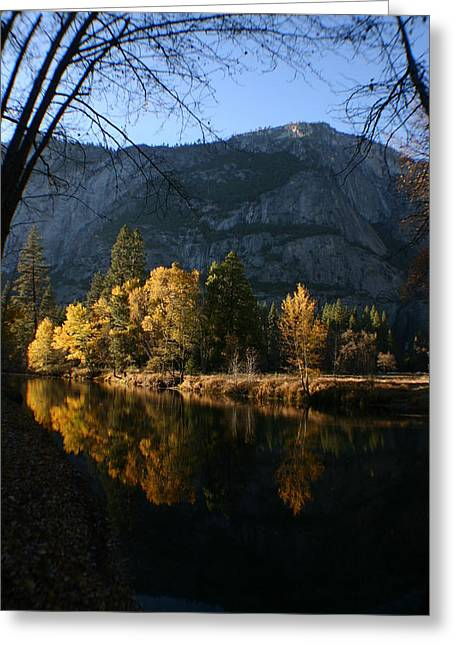 Reflections Greeting Card by Travis Day