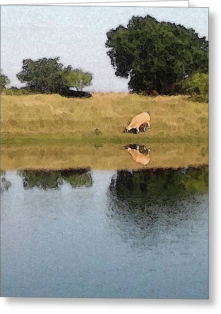 Reflective Cow Greeting Card