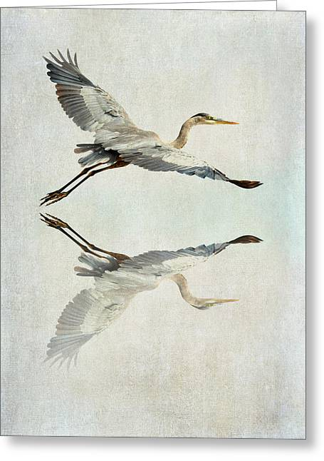 Reflective Flight Greeting Card