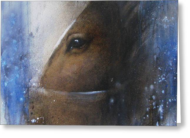 Reflective Horse Greeting Card