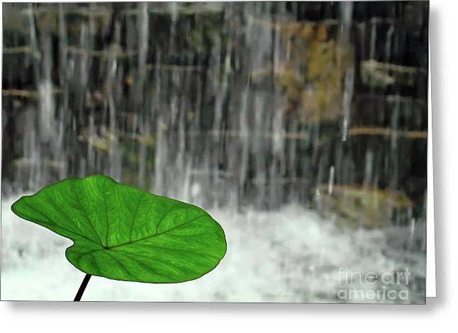 Refreshed By The Waterfall Greeting Card