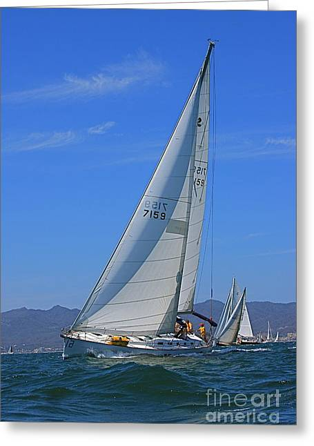 Greeting Card featuring the photograph Regatta 1 by Nicola Fiscarelli