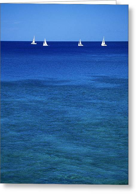 Regatta In Calm Blue Ocean Greeting Card by Peter French - Printscapes