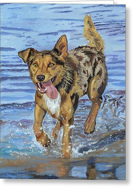 Reggie Portrait Of A Working Dog Greeting Card by Kellie Straw