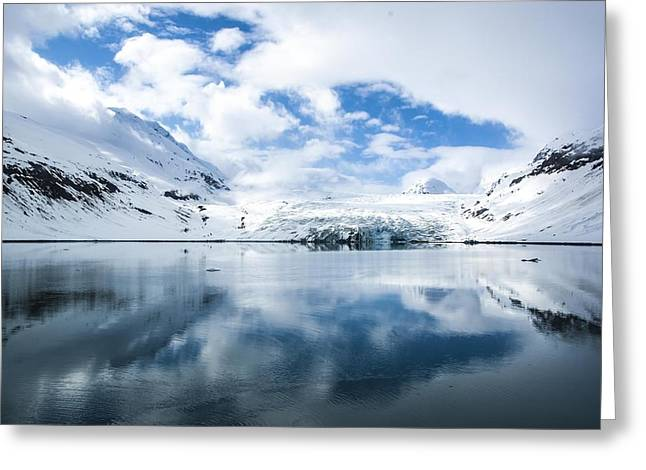 Reid Glacier Glacier Bay National Park Greeting Card