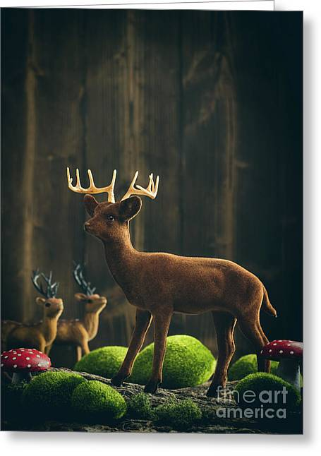 Reindeer Greeting Card by Amanda Elwell