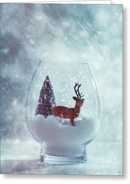 Reindeer In Glass Snow Globe  Greeting Card by Amanda Elwell