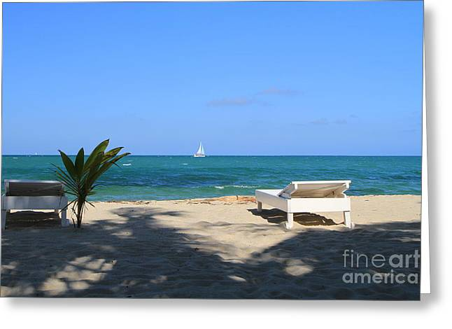 Greeting Card featuring the photograph Relax And Enjoy by Edward R Wisell