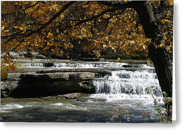 Relaxation Greeting Card by Melissa  Riggs