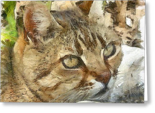 Relaxed Tabby Cat Resting In Garden Greeting Card by Tracey Harrington-Simpson