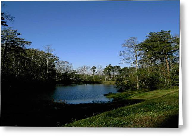 Relaxing By The Pond Greeting Card by Patrick Murphy