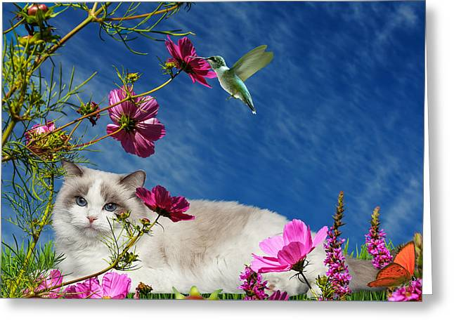 Relaxing Greeting Card