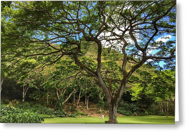 Relaxing Under The Tree Greeting Card