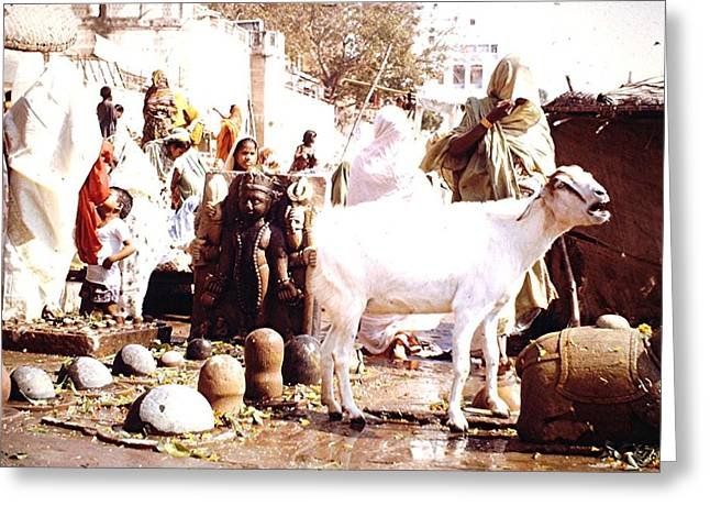 Religious Site, India Greeting Card