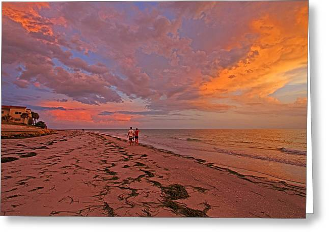 Remains Of The Day Greeting Card by HH Photography of Florida