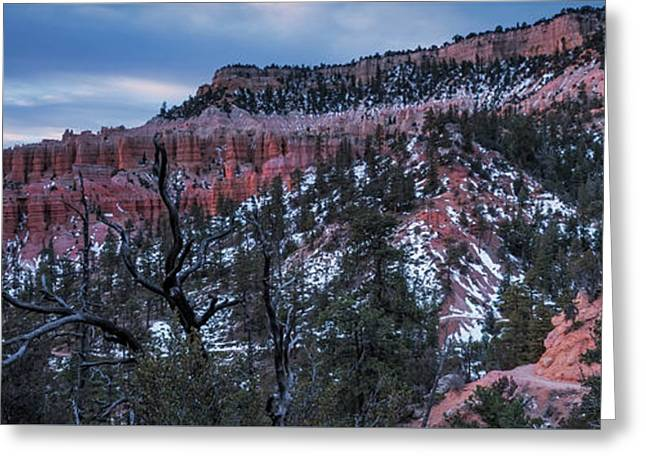 Greeting Card featuring the photograph Remembering Bryce by Edgars Erglis
