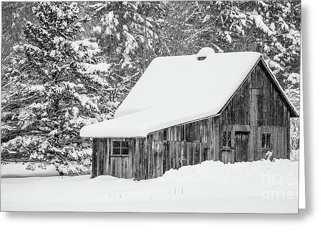 Greeting Card featuring the photograph Remote Cabin In The Woods Etna New Hampshire by Edward Fielding