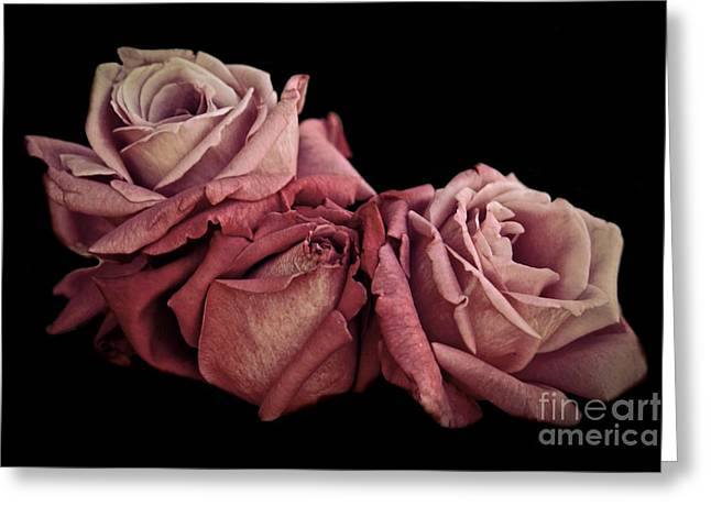 Renaissance Roses Greeting Card