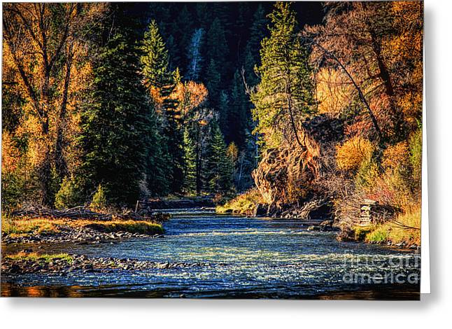 Fishing On The Colorado Greeting Card by Lynn Sprowl
