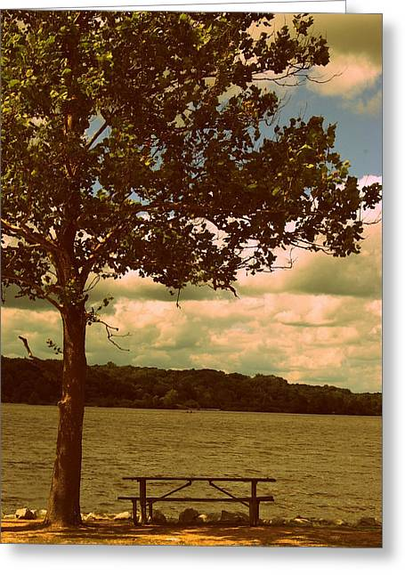 Rest Greeting Card by Diane Reed