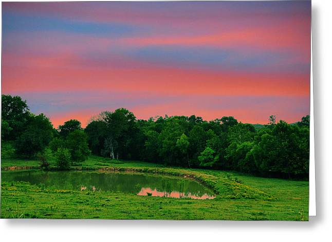 Tennessee Farm Greeting Cards - Restful Afternoon Greeting Card by Jan Amiss Photography