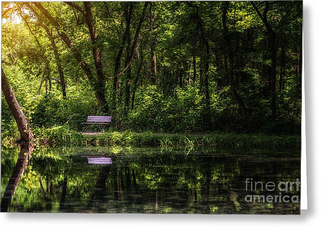 Resting Bench At The Chickasaw National Recreation Area Greeting Card