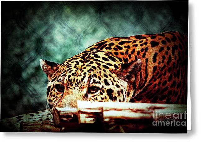 Resting Jaguar Greeting Card