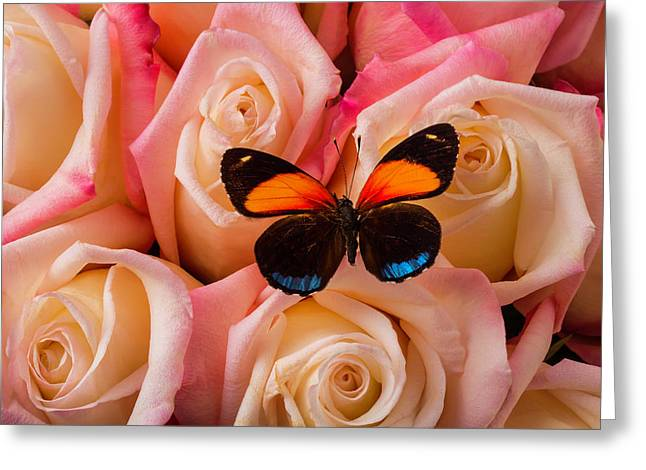 Resting On Pink Roses Greeting Card