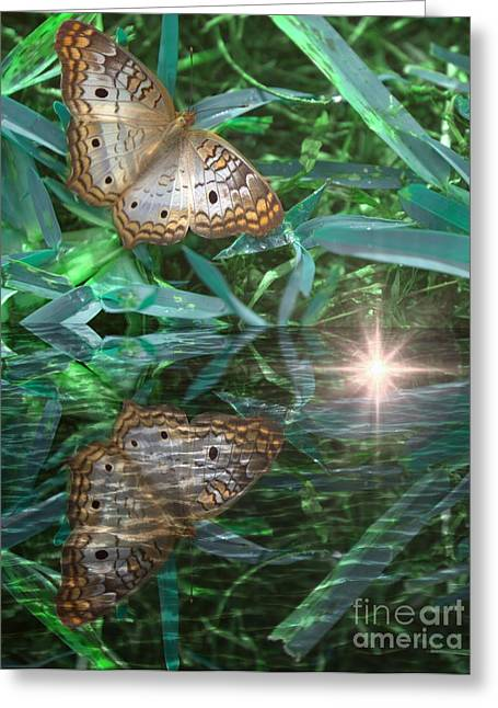 Resting On River's Edge Greeting Card by Lilliana Mendez